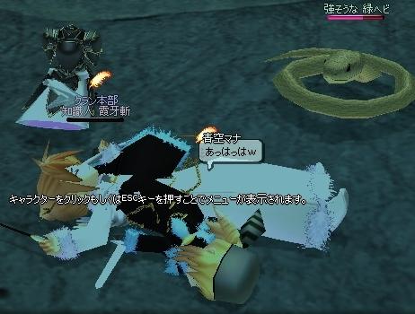 mabinogi_2007.03.04 001