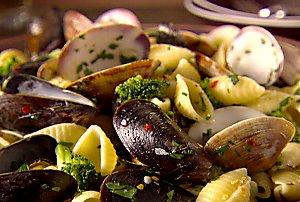 clam mussle