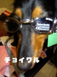 PICT2411.jpg