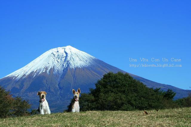 Mt.Fuji AR0004