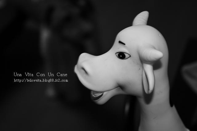 Cow!0001.jpg