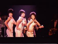 2007_1121dreamgirls0015.jpg
