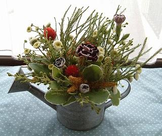 野の花のイメージ