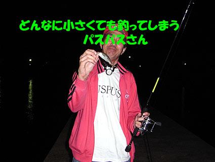 11072201302.jpg