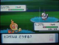 pokemon_dia01.jpg
