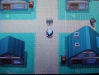pokemon_dia03.jpg