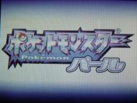 pokemon_perl-01.jpg