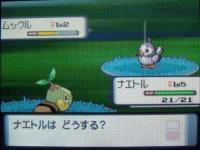 pokemon_perl-04.jpg