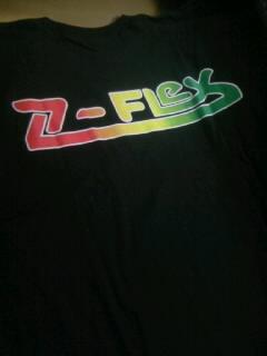 Z-Flex SS-T 2-3