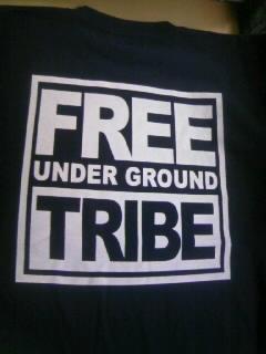 Free T 1-3