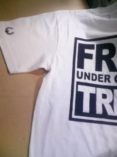 Free T 2-4