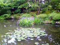 2007.6.15_11.jpg