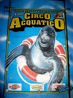 circo01.jpg