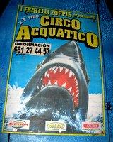 circo02.jpg