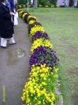 flowerpark_7.jpg