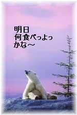 koyuki1.jpg