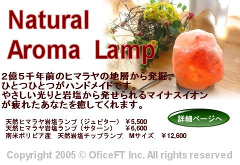 top_Lanp_02.jpg