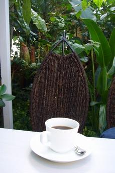 緑に囲まれた店内でコーヒーを頂く