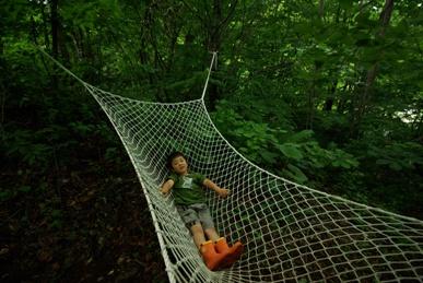 森でお昼寝