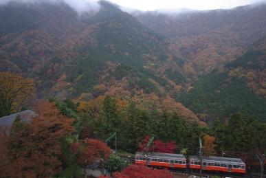 電車の眺め