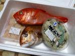 20120121_tsukiji-v2-1.jpg