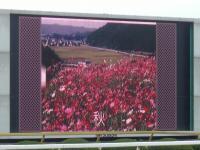 玄海町ならではの風景が大型スクリーンでも紹介!