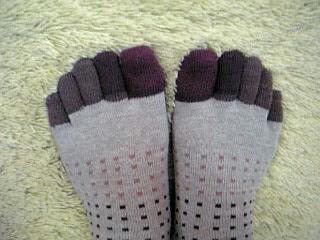 五本指靴下1