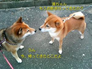 2006-10-28-kai.jpg