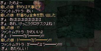 blog2_239.jpg
