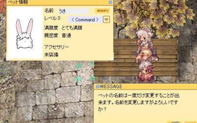 blog2_344.jpg