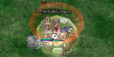 blog2_533.jpg