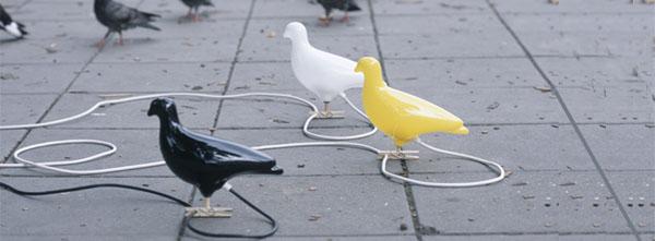 pigeonlightonastreet.jpg