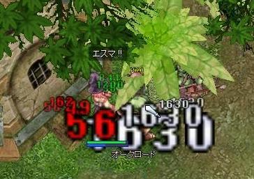 0810_02.jpg