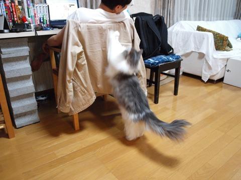催促03(2011.04.25)