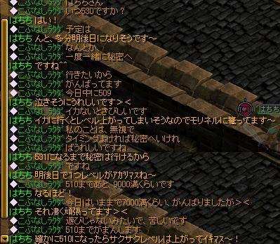 20070625121317.jpg