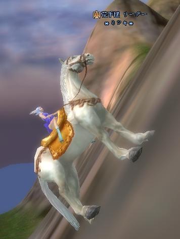 馬、すごい!