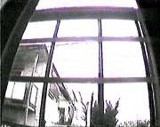 00972.jpg