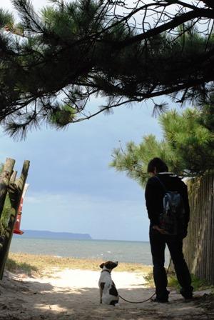 松原から海を見る