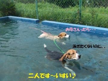 001_convert_20110808231748.jpg