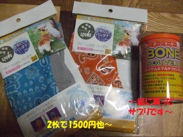 002_convert_20110624234024.jpg