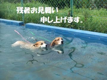 002_convert_20110812023410.jpg