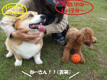 004_convert_20110606004200.jpg