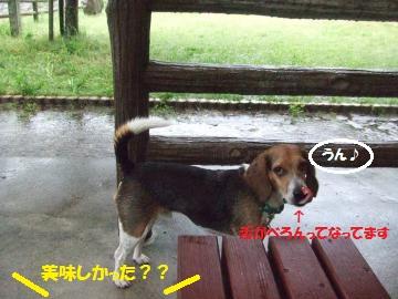 005_convert_20110530005152.jpg