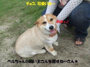 008_convert_20110801210052.jpg