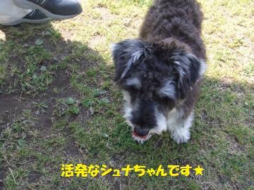 009_convert_20110513000630.jpg