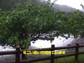 014_convert_20110530005519.jpg