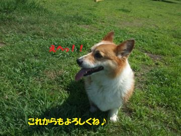 014_convert_20110725011932.jpg