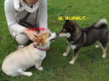 017_convert_20110727001431.jpg