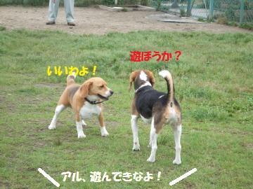 023_convert_20110614010613.jpg