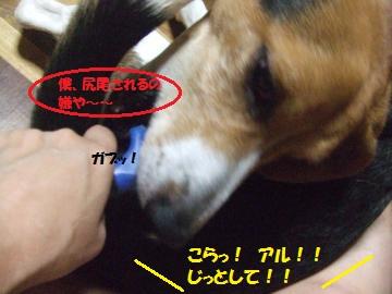 025_convert_20110628232239.jpg